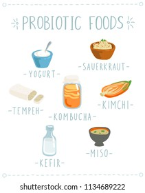Vector set of hand drawn icons of Probiotic foods. Cartoon style illustration of gut healthy products such as Kefir, Sauerkraut, Tempeh, Kombucha, Kimchi, Yogurt and Miso