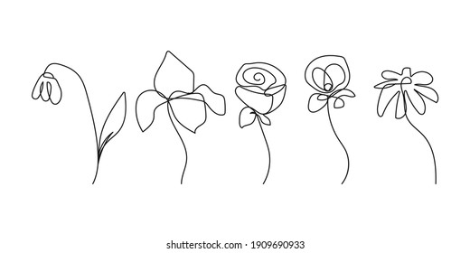 Vector Set of Hand Drawn Line Art Flowers. Minimalist Trendy Contemporary Floral Design. Perfect for Wall Art, Prints, Social Media, Posters, Invitations, Branding Design.