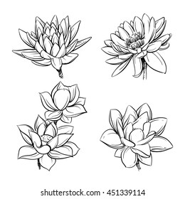 Lotus sketch images stock photos vectors shutterstock vector set of hand drawn lotus flowers sketch floral botany collection in graphic black and mightylinksfo