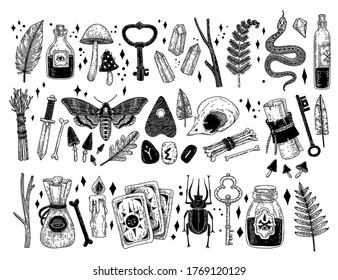 Vector set of hand drawn magical occult elements in graphic style. Sorceress collection. Hand drawn magic icons: skull, bones, feathers, crystals, potions, cards, runes, insects. Sacred mysterious art