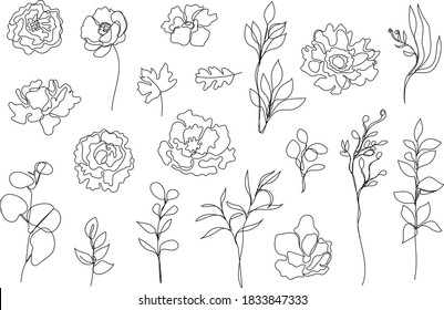 Vector set of hand drawn, single continuous line flowers, leaves. Art floral elements. Use for t-shirt prints, logos, cosmetics and beauty design elements