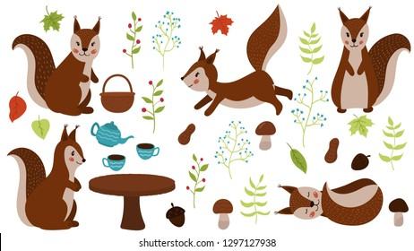 Vector set of hand drawn squirrels. Cartoon maple leaves, teapot, cups, plants, mushrooms, nuts and acorns. Woodland animals. For the nursery.