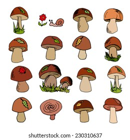 vector set of hand-drawn mushrooms on white background