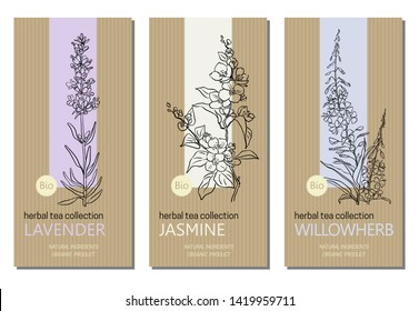 Vector set of herbal tea labels with herbs and plants sketches: jasmine, lavender and willow herb. Packaging template. Healthy food, bio, organic, natural product, herbal tea.