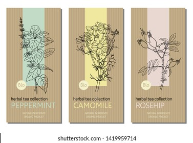 Vector set of herbal tea labels with herbs and plants sketches: chamomile, peppermint and rose hip. Packaging template. Healthy food, bio, organic, natural product, herbal tea.