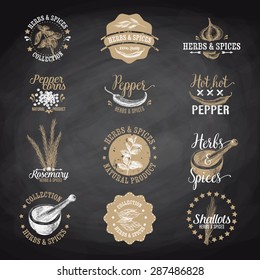 Vector set of herbs and spices labels, badges and hand drawn design elements. Logo collection. Chalkboard.