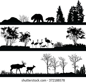 Vector set of illustration with wild animals (bear, Flamingo, deer) in different habitats