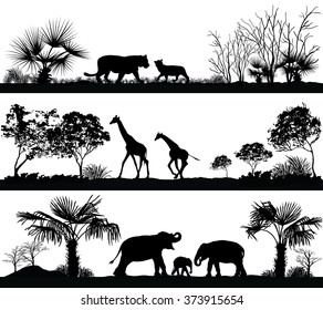 Vector set of illustration with wild animals (giraffe, elephant, lion) in different habitats