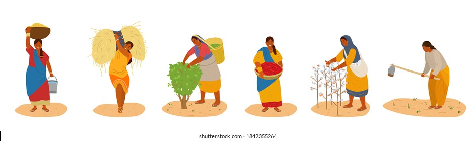 Vector Set Of Indiam Women Working. Harvesting Cotton, Chili Pepper, Corn, Wheat, Picking Tea Leaves, Plowing. Traditional Agriculture. Isolated On White.