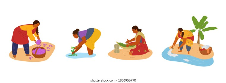 Vector Set Of Indian Women Working. Collecting Saffron, Working In Rice Field, Sorting Herbs, Doing Hand Laundry. Manual Labour.