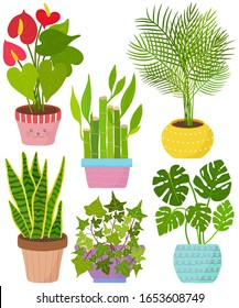 Vector set indoor house plant in pot. Flamingo lily, lucky bamboo, Areca palm, Snake plant, English Ivy, Monstera. Collection of flat styled hand drawn exotic houseplant. Cute illustration