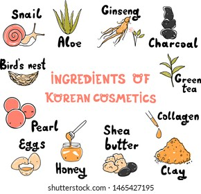 Vector set of ingredients of Korean cosmetics. Skin care composition. Snail, collagen, aloe, ginseng, charcoal, green tea, pearl, bird's nest, clay, honey, eggs, Shea butter. Hand drawn illustration.