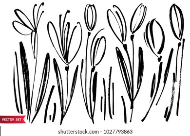 Vector set of ink drawing snowdrops, herbs and flowers, monochrome artistic botanical illustration, isolated floral elements, hand drawn illustration.