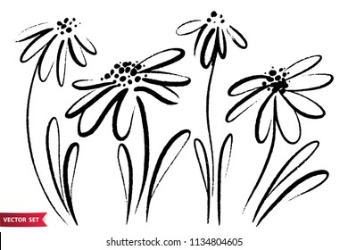 Vector set of ink drawing wild flowers, monochrome artistic botanical illustration, isolated floral elements, hand drawn illustration.