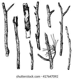 vector set of ink drawing wood twigs, isolated nature objects, tree branches, sticks, hand drawn illustration