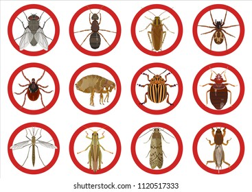 Vector set with insect red icons of pests of cockroach and tick, fleas and spider, mosquito and fly, moth an ant on light background.