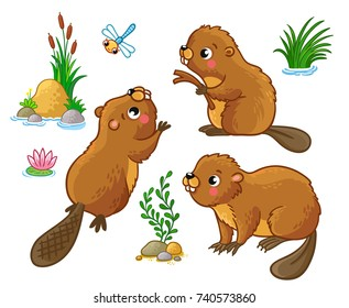 Vector set with isolated beavers in different poses. Cute animals in cartoon style.