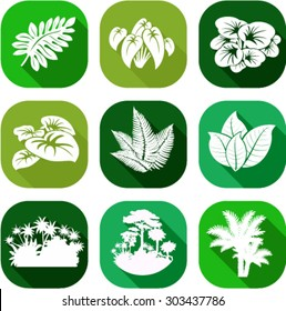 vector set of jungle flat icons with tropical trees, plants and leaves