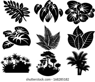 vector set of jungle icons with tropical trees, plants and leaves