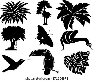 vector set of jungle icons with tropical trees, plants and leaves, Rainforest  Frog, Toucan, butterflies, humming-birds and anaconda