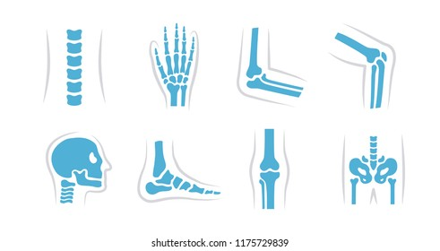 Vector set of knee, leg, pelvis, scapula, skull, elbow, foot, hand and other icons. Orthopedic and skeleton symbols on white background. Human joints and bones.