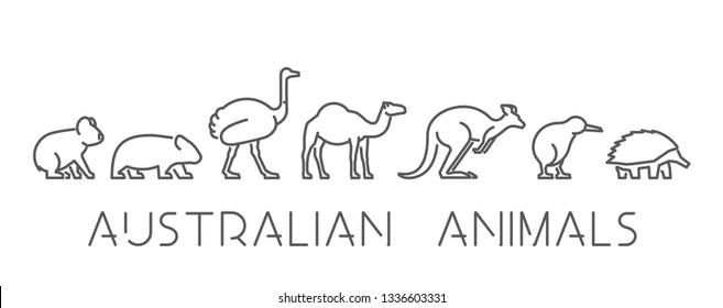 Vector set of linear Australian animals. Line icon koala, kangaroo, echidna, kiwi and other.