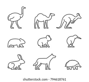 Vector set of linear Australian animals. Line icon koala, kangaroo, echidna, kiwi and other.
