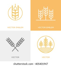 Vector set of logo design templates in trendy linear style - wheat and grain graphics for bakery emblems