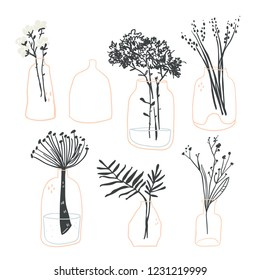 Vector set of minimalistic elegant glass vases with plants, flowers and leaves. Scandinavian hygge elements perfect for textile, fabric, posters, cards