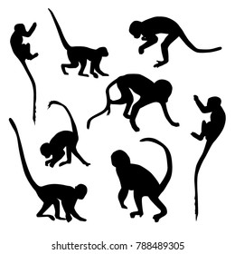 Vector set of monkey silhouettes