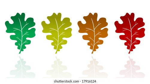 Vector set Oak leaves