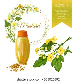 Vector set of objects on mustard, its fruits and its application. Mustard oil. Background and Label. Achieved in a realistic stile. Objects isolated