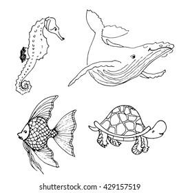 fish marine life shell shellfish sea stock vector royalty free Inside Indian Ocean vector set of ocean animals hand drawn underwater cartoon creatures seahorse whale