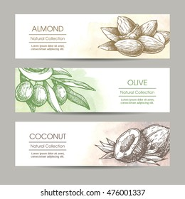 Vector set packaging cosmetic, label, banner, poster, identity, branding. Stylish design with sketch illustration of olive branch, coconut and almond on watercolor background. Hair care, skin car