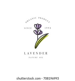 Vector set of packaging design template and emblem - beauty and cosmetic oil - lavender. Logo in trendy linear style