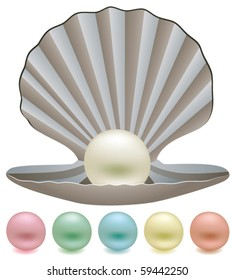 vector set of pearls and a shell