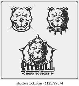 Vector set of pitbull heads. Sport club emblems and design elements.