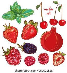Vector set with pomegranate, strawberry, mint, cherry, raspberry, blackberry. Illustration of small fruits and berries. Fresh, juicy and colored. eps 10
