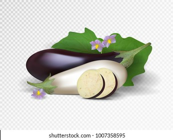Vector set of purple and white vegetables. Violet and white eggplants with slice isolated on transparent background. Photo-realistic vector.