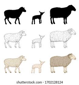 Sheep 100 Stencil
