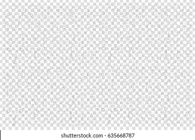 Vector set of realistic isolated water drops on the transparent background.