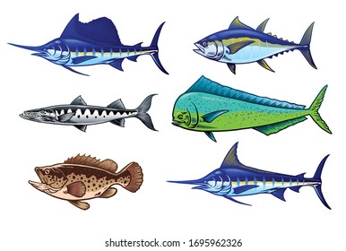 vector of set of saltwater fish