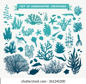 Vector set of sea animals - coral, fish, shrimp, seashells and starfish. Underwater ocean creatures on a white background.
