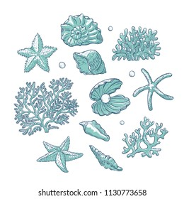 Vector set sea shells stars corals and pearls different shapes. Clamshells starfishes polyps monochrome outline sketch illustration isolated on white background for design marine tourist cards logos.