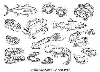 Vector set. Seafood crab, lobster, shrimp, fish, tuna, oysters, scallops, octopus, squid, mussels, salmon. Illustration vintage style. Templates for design sea shops, menu, restaurants, markets.