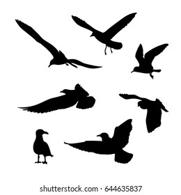Vector set of seagulls silhouettes isolated on white background.