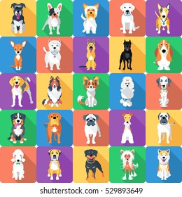 Vector set, seamless background with dogs sitting and standing icon flat design.
