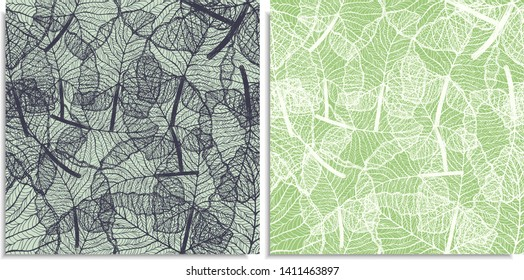 A vector set of a seamless pattern with sprigs of jungles leaves. Hand-drawn on sheet at the graphic style. Lines, compound path. Green color shades, alocasia, colocasia jungle. Looks like web or lace