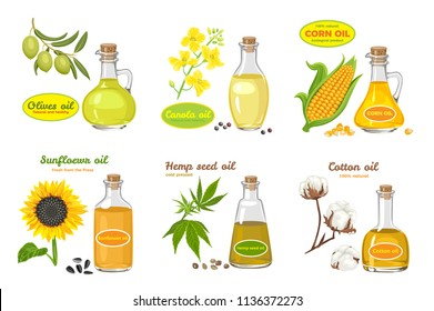 Vector set of seed oils isolated on white. Illustration in flat style. Sunflower, olives, corn, cotton, hemp and canola oil in glass jar. Flowers and seeds.