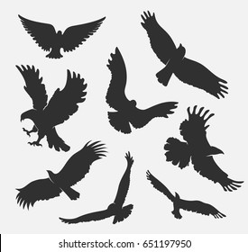 vector set silhouette flying eagle on white background